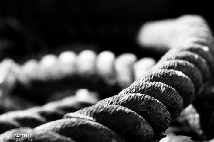 Art Photo Prints Rope