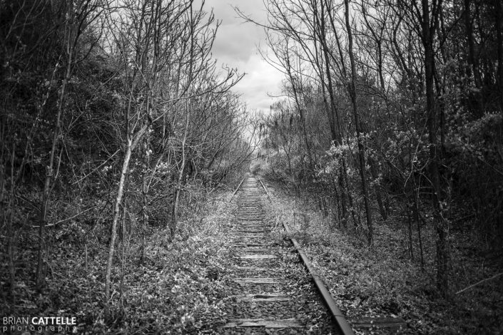 Black and White Photography Abandoned Railroad Tracks