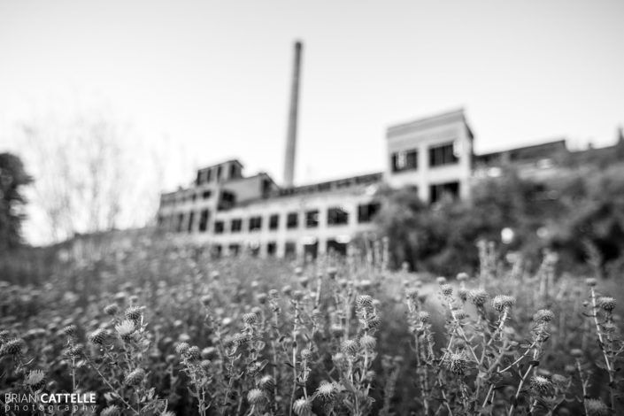 Black and White Photography Abandoned Sugar Mill