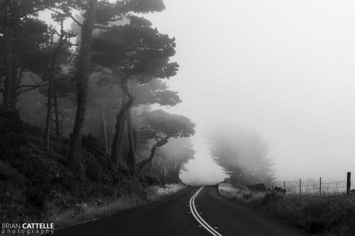 Fine Art Photography Prints Fog Roll