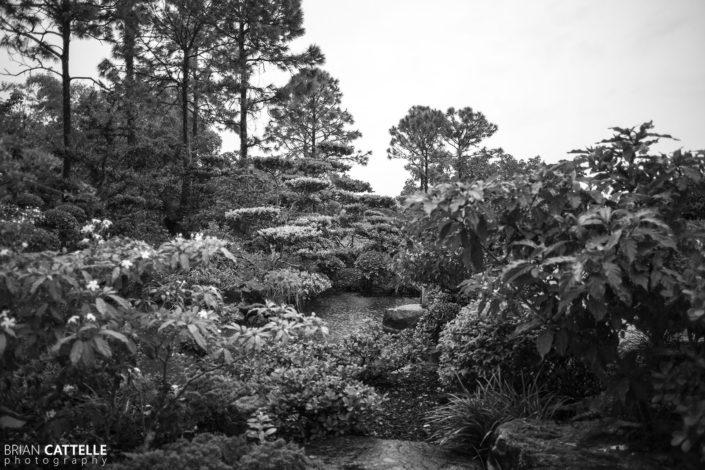 Nature Photography Morikami Museum