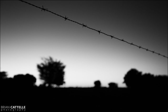 Photography Barbed Wire