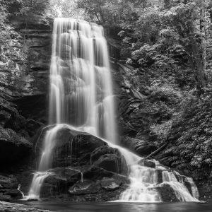Catawba Falls Study 02